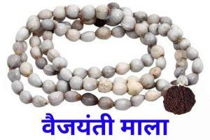 वैजयंती की माला कौन पहनता है? Who can wear Vaijayanti Mala?