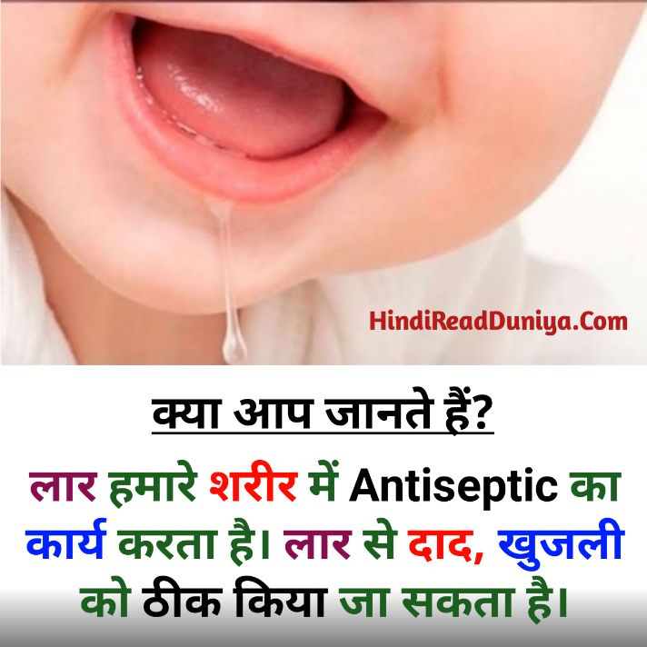 Hindi fact question answer