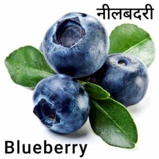 Blueberry-नीलबदरी