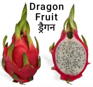 Dragonfruit-ड्रैगन
