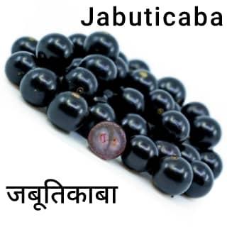 Jabuticaba जबूतिकाबा