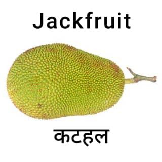 Jackfruit-कटहल