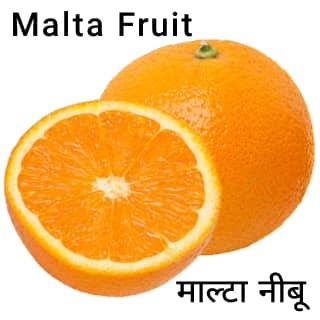 Malta-Fruit-माल्टा-नीबू