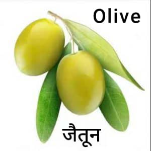 Olive-Fruit-जैतून