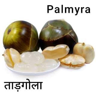 palmyra ताड़ का फल