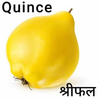 Quince-श्रीफल