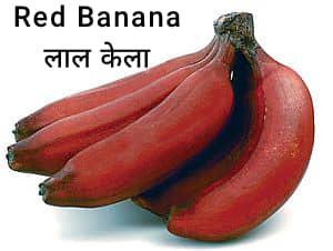 Red-banana-लाल-केला