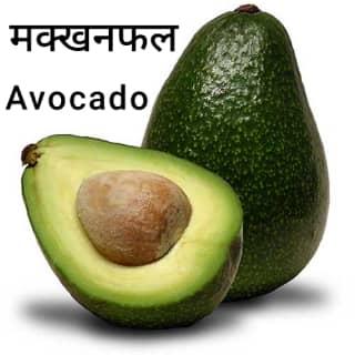 avocado-fruit-मक्खनफल